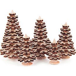 Schichtenbäume  -  Nadelbäume natur, 5 - teilig  -  8cm