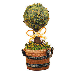 Set of Three -  Miniature Boxwood  -  6cm / 2,5 inch